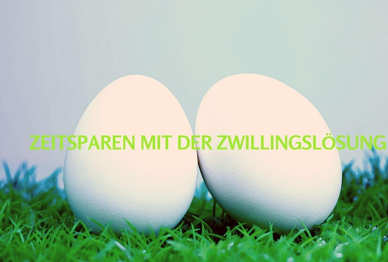 Zwillingslösung_Stress