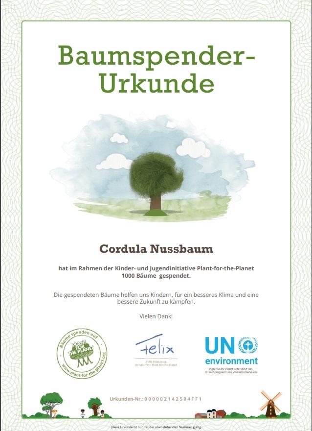 Spenden Adventskalender Bäume Klima