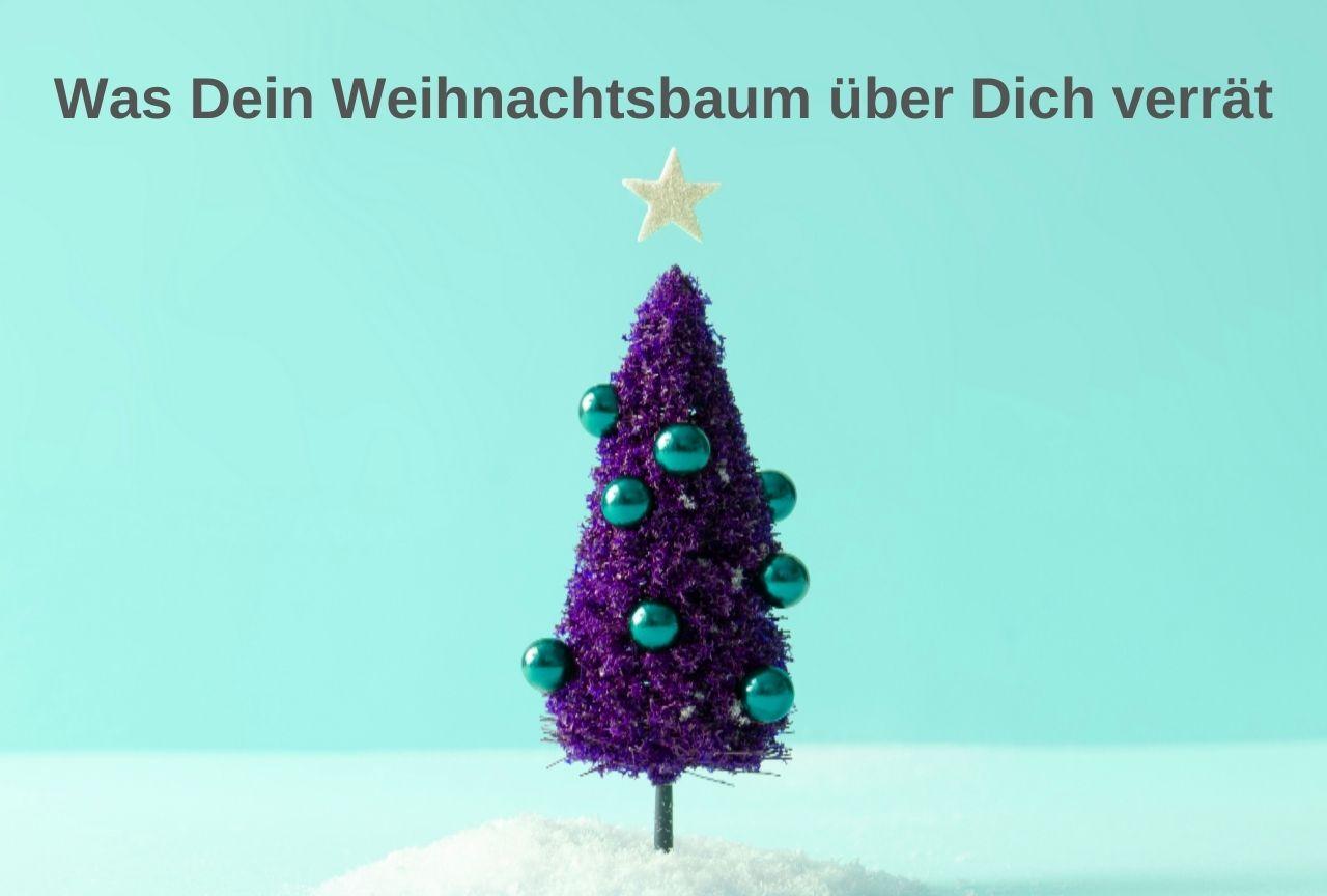 Welcher Weihnachtsbaum-Typ bist Du?
