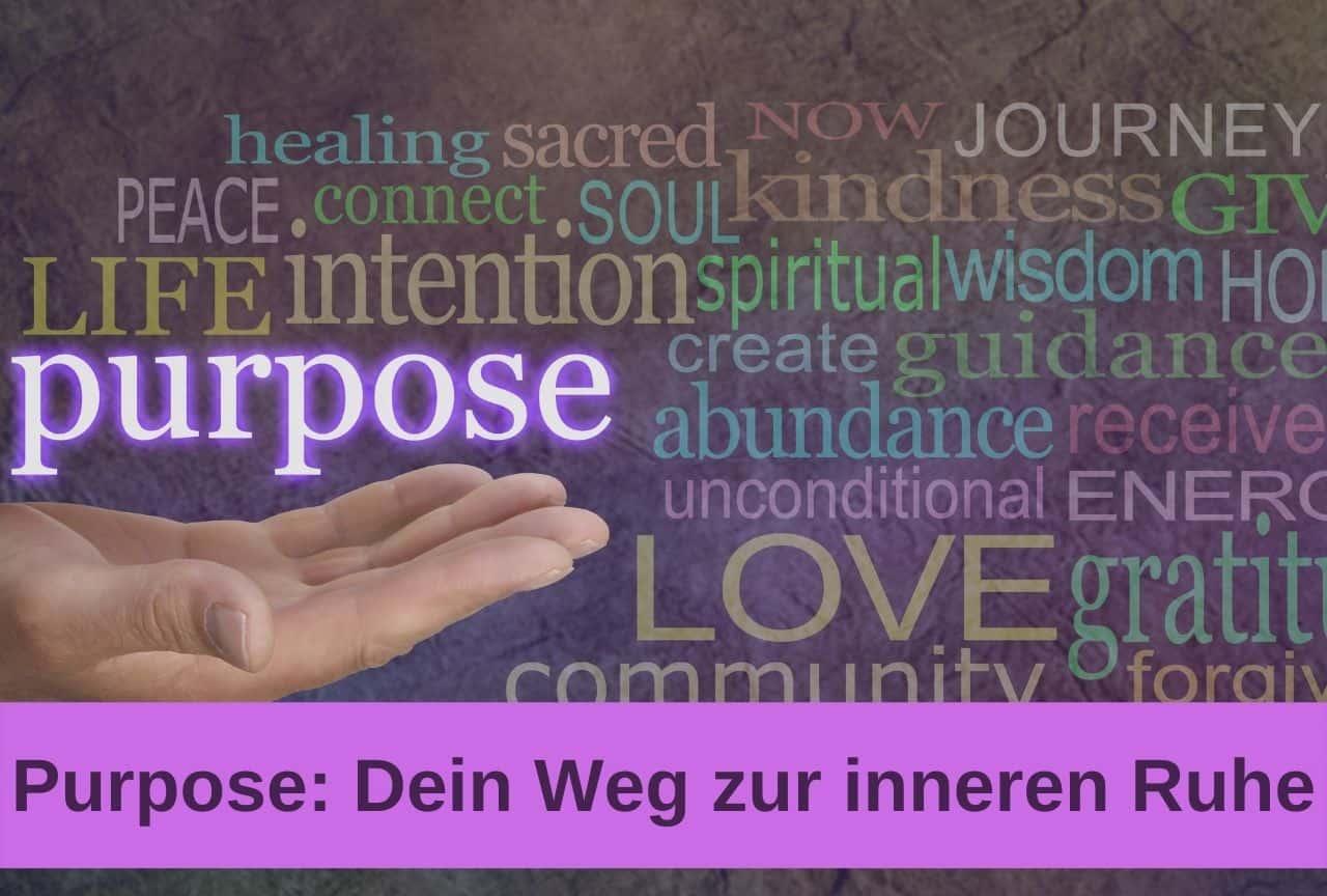 purpose-sinn